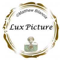 Lux Picture Logo